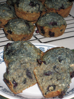 Dairy Free Blueberry Oatmeal Muffins
