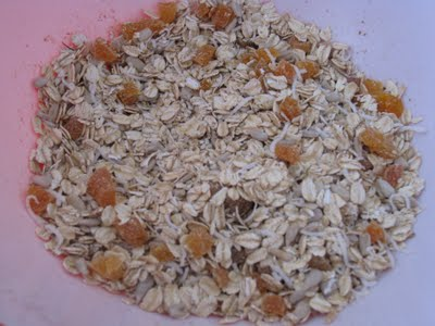 Healthy Peanut Butter & Granola Bars