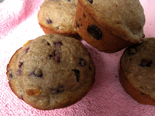 Chocolate Chip Pomegranate Muffins