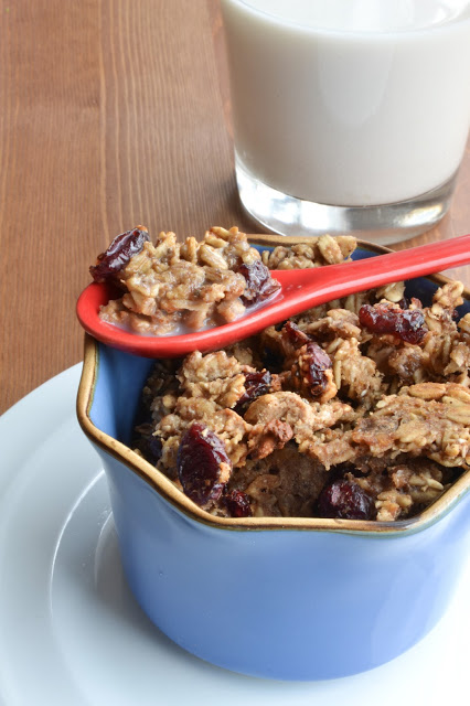 Cranberry Oatmeal Cookie Cereal