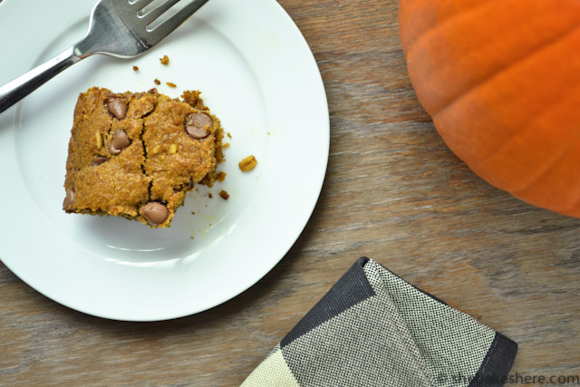 Pumpkin Chocolate Chip Oatmeal Cake